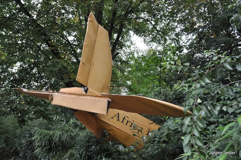 Flugzeugwrack im Jungel