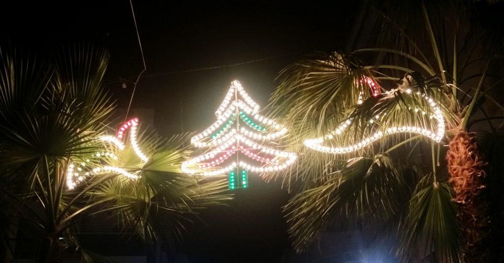 Weihnachtsdeko in den Palmen
