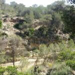 Flusstal