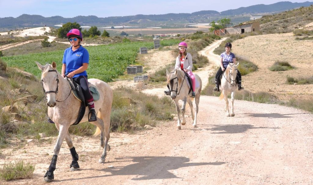 Ausreiten in Spanien als Geschenkgutschein verschenken