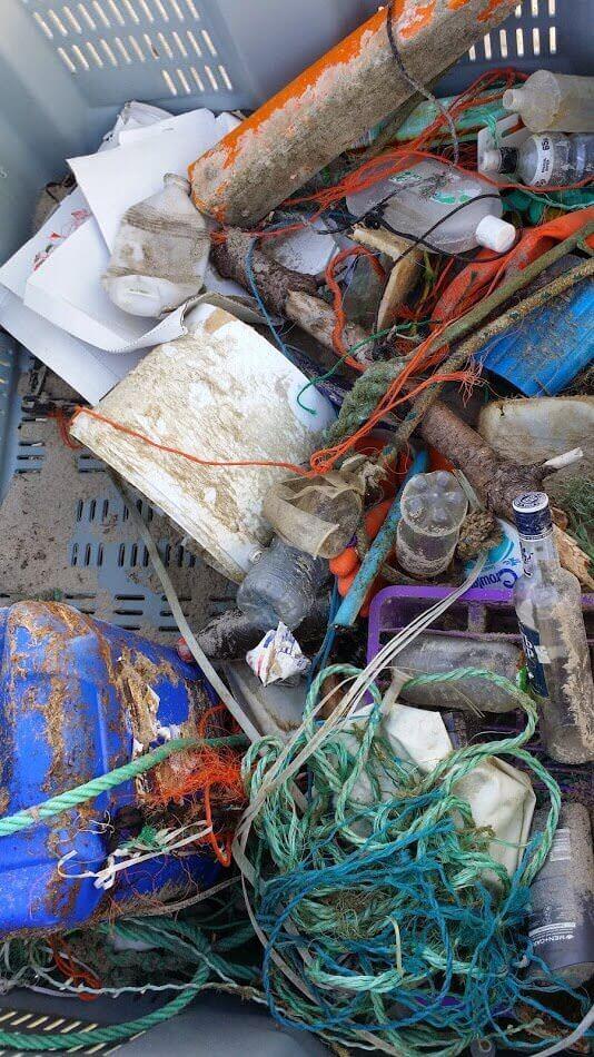Unsere Müll-Ausbeute